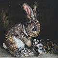Wild rabbit - claire garland