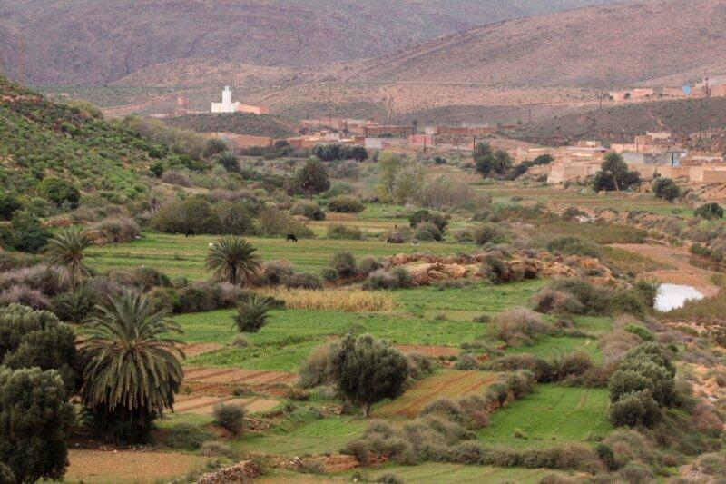 Vallée jardinée_Oued Assaka_Maroc_XRu
