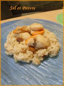 risotto_st_jacques