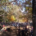 Mont royal 21oct 022