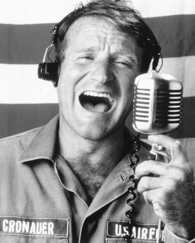 Robin-robin-williams-3674043-383-479