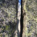 Escalade dans le Mont Blanc