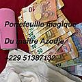 Porte-monnaie magique en euro multiplicateur d'argent