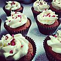 Marry berry's rich vanilla cupcakes