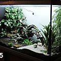 [vendu] grand terrarium complet - ref a005