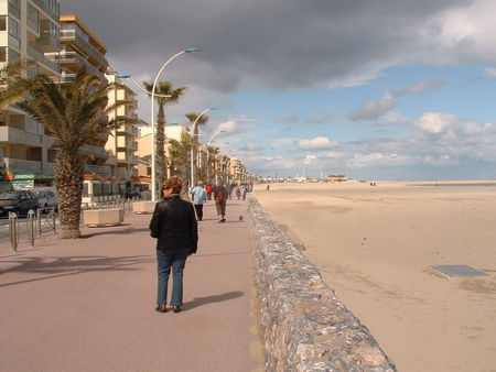 canet_31