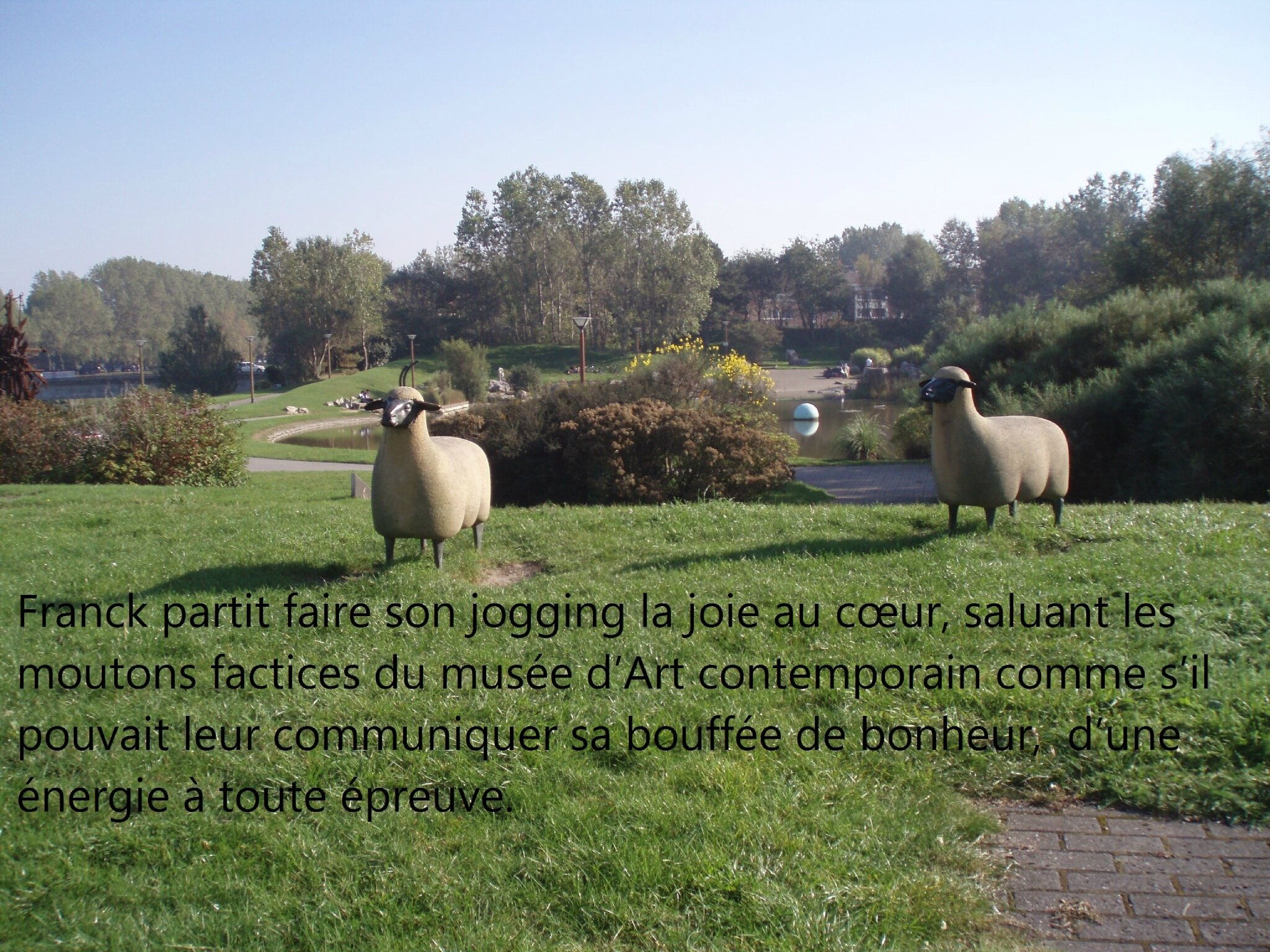 Moutons musee d' AC