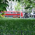 London #2 : les parcs