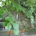 Visite à la grotte mariale