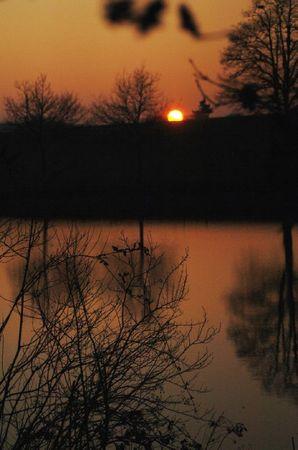 Domaine des étangs jan 2010 (20)