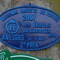 Concours National à Dampierre sur Boutonne 2007