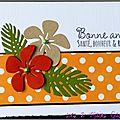 carte de voeux avec hibiscus