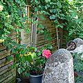Lire au jardin....