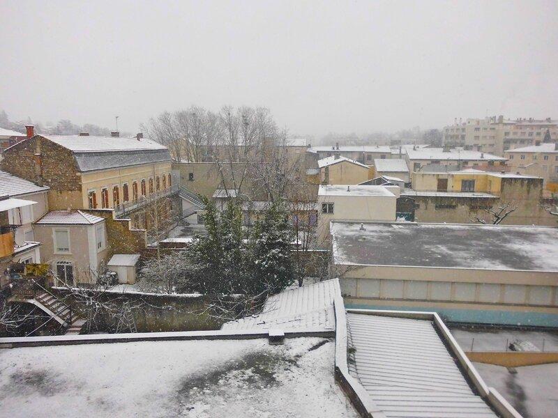 neige 21 janv 2015 (2)