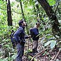 Explication du guide Seu João sur la Mata