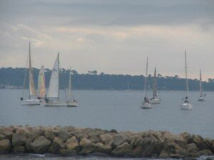 Voiles___Cannes_3