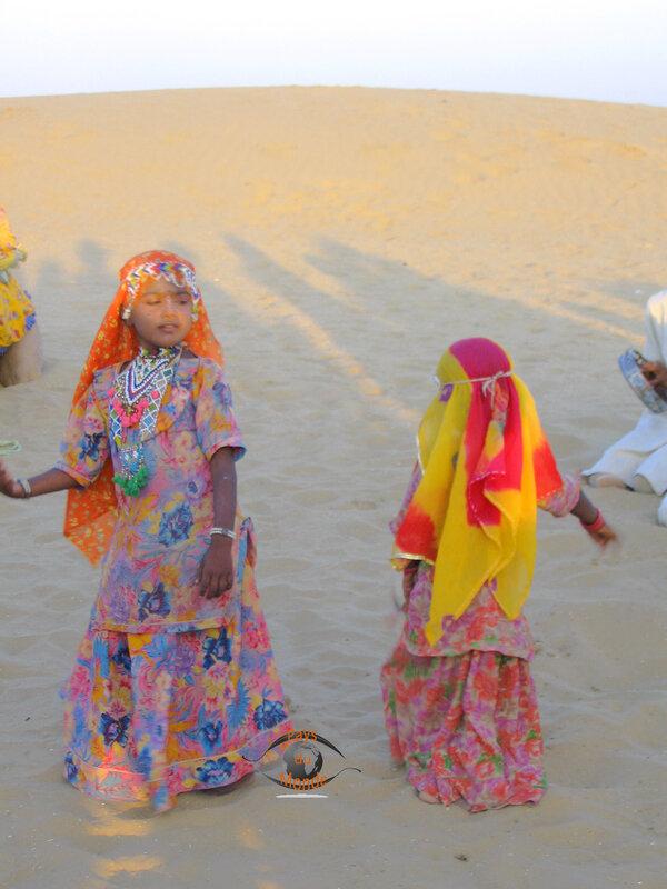 Le désert dromadaires