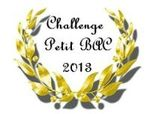 0 Challenge Petit Bac 2013-001 - Copie