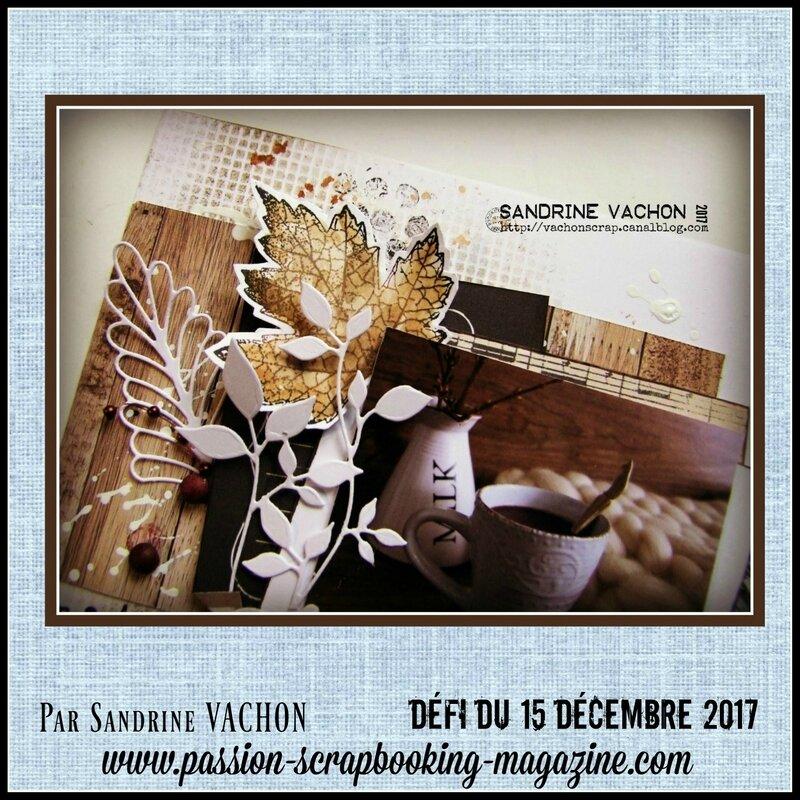 Sandrine VACHON défi 15 déc blog PS (2)