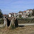 La cité médiévale de saint-benoit-du-sault