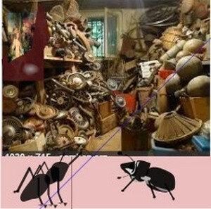 2018-02-19_165728-la fourmi et le scarabee-430020