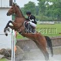 Concours jeûnes chevaux à jardy
