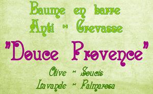 Barre_anti_crevasse
