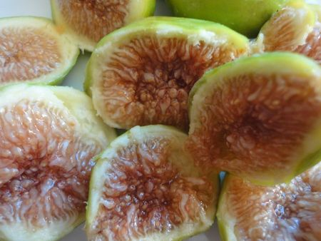 Figues4 photosN