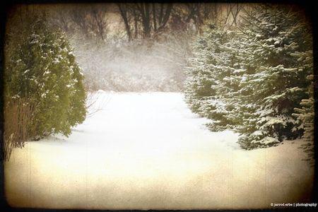 winter_solstice_erbephoto