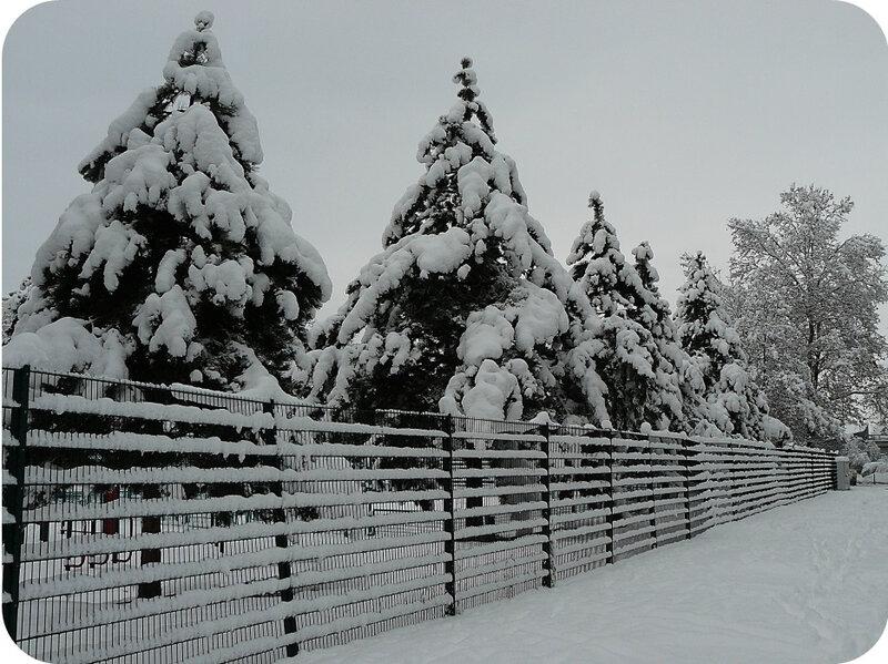 Quartier Drouot - Photo neige 39