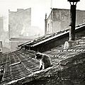Edouard-Boubat-chat-paris
