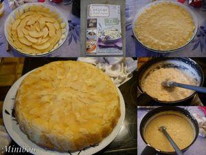 20111105 gateau de riz aux pommes