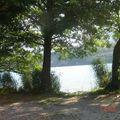 vue du lac sur le sentier des roselières.