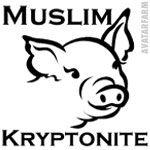 muslimkryptonite