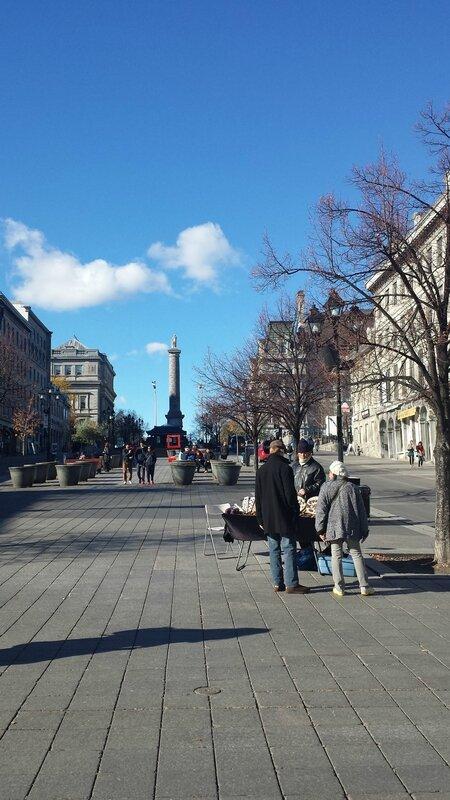 2015 11 07 (32) - balade dans le Vieux Montréal - place Jacques Cartier Hôtel de ville