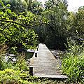 Balade verte au lac du temple