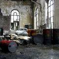 Ambiance cockerie Belgique_6024