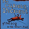 Mark haddon - the curious incident of the dog in the night-time