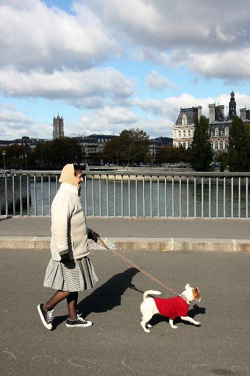 4-Promenade chien, ombre_0283