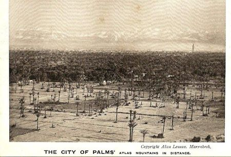 01--- The city of Palm's Lennox
