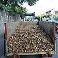 Manutention du broyat de bois.