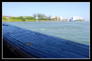 2008_08_16___WE_20___Miami_030