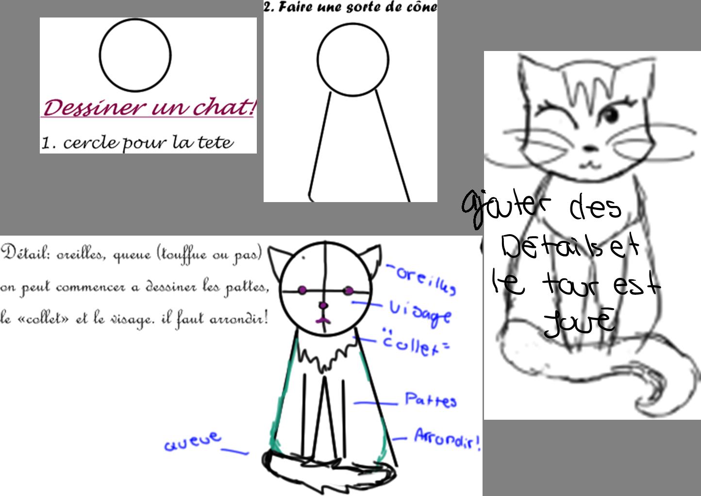 tuto comment dessiner un chat en 4 etapes sans les details chat anonyme. Black Bedroom Furniture Sets. Home Design Ideas