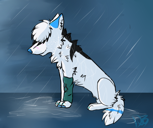 in_the_rain_by_dr3am_wolf-d5c0gbg