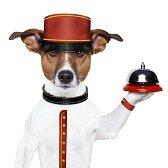17882472-botones-perro-sosteniendo-una-campana-con-sombrero-rojo