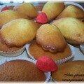 Minis gâteaux au yahourt