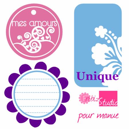 etiquettes_projet_manue
