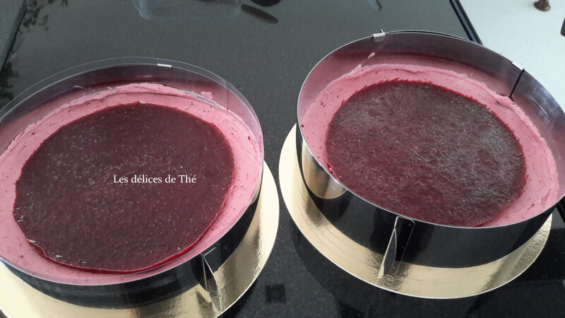 Entremet fruits rouges insert gelée framboises (22)