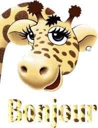 bonjour girage