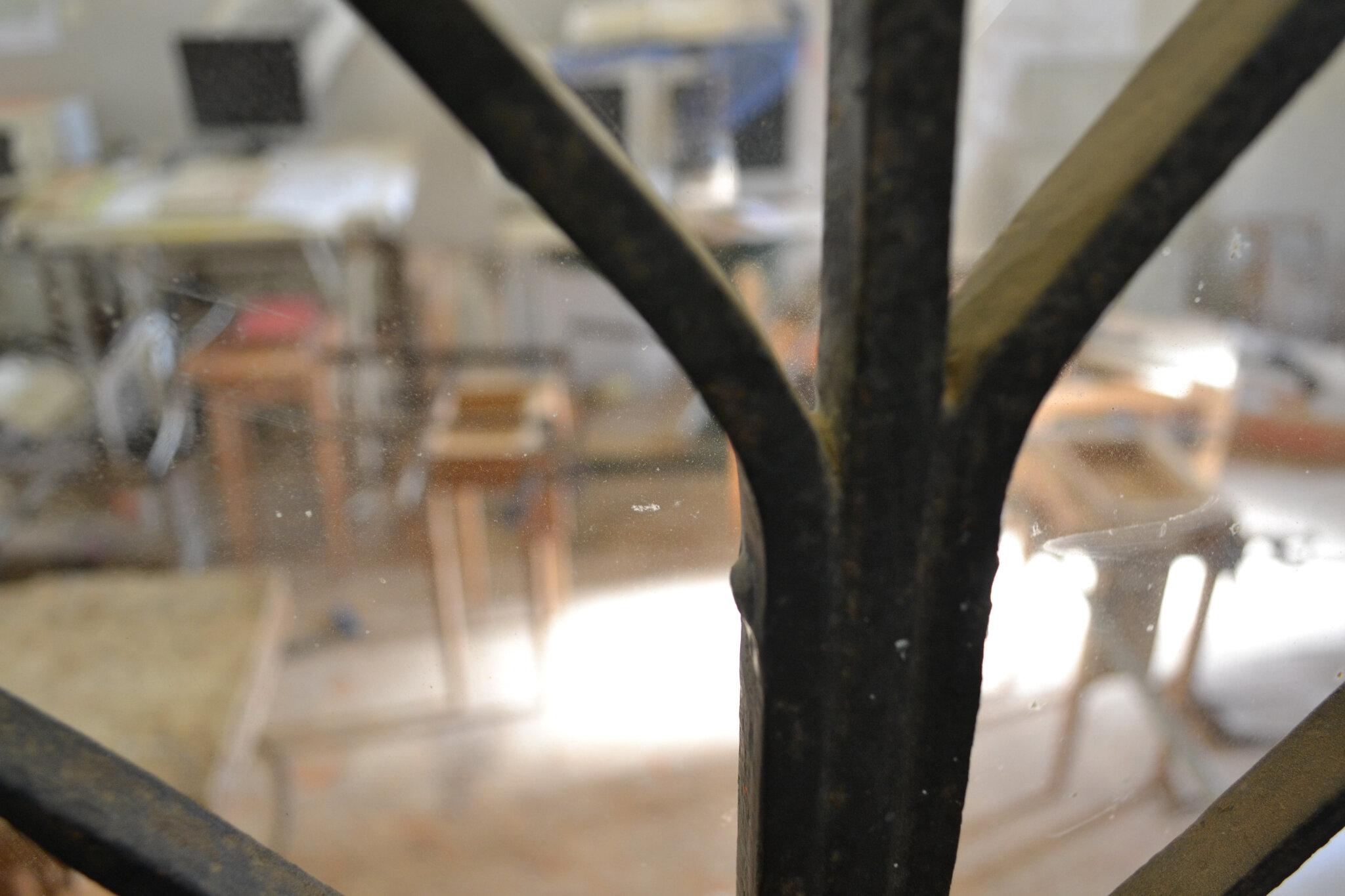 les fauves du CAP en cage